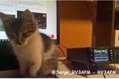 @Serge_RV3APM-RV3APM
