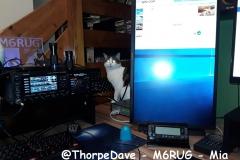 @ThorpeDave - M6RUG - Mia