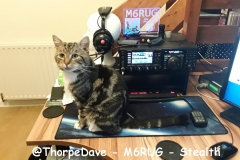 @ThorpeDave - M6RUG - Stealth
