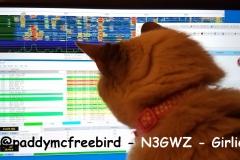 @paddymcfreebird - N3GWZ - Girlie
