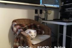 @DxZulu - R2AOD - Bublick