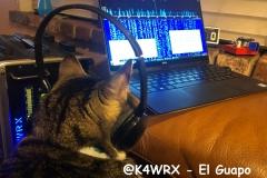 @K4WRX-El-Guapo