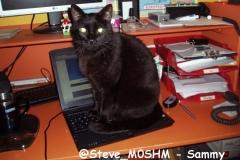 @Steve_M0SHM - Sammy