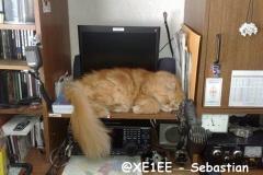 @XE1EE - Sebastian